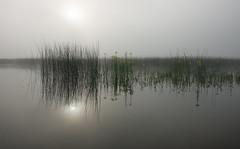 Cerknica Lake (happy.apple) Tags: otok cerknica slovenia si cerknikojezero cerknicalake slovenija fog morning landscape jutro megla summer poletje