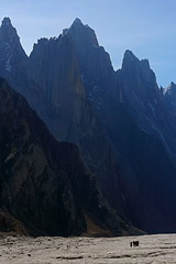 Biafo: Men and mountains (Shahid Durrani) Tags: biafo glacier porters baltistan pakistan karakoram karakorams