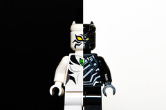 White Tiger, Black Panther (Oky - Space Ranger) Tags: lego marvel super heroes avengers civil war dark side black white tiger panther