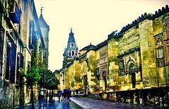 Crdoba...on a rainy day (MickyFlick) Tags: cordoba andalusia spain mezquita mosque cathedral mezquitacatedraldecrdoba moorish islamic architecture greatmosque rainyday sightseers mickyflick