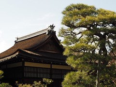 Kyoto Imperial Palace (M_Strasser) Tags: kyotoimperialpalace olympus olympusomdem1 kyoto japan  kyotogosho