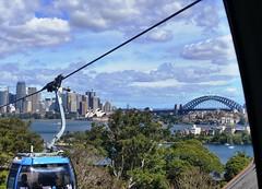 Views from our bubble (Snuva) Tags: australia nsw sydney skysafari cablecar ropeway tarongazoo