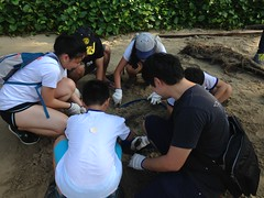 2016-09-03 09.43.18 TM7 CAPT & NUS DOS [Joleen Chan] (Habitatnews) Tags: tanahmerah7 capt nus coastalcleanup coastalcleanupsingapore iccs iccs2016