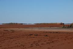 Lake Ballard (9) (Boobook48) Tags: lakeballard antonygormley westernaustralia insideaustralia