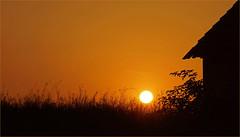 Sunrise in Winequarter (lady_sunshine_photos) Tags: sunrise sonnenaufgang winequarter weinviertel stald scheune haus house grser sommer summer grasses field feld acker loweraustria niedersterreich at austria sterreich europe europa ladysunshine ladysunshinephotos sonyalphanex7 orange wonderfulworld supershot barn stall heaven sky