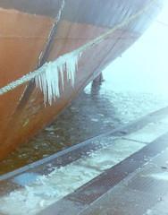 dutch winter (63) (bertknot) Tags: winter dutchwinter dewinter winterinholland winterinthenetherlands hollandsewinter winterinnederlanddutchwinter