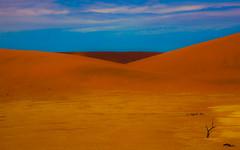 Colors of the Namib Desert (Home@Dundas) Tags: africa canon desert namibia sossusvlei deadvlei petrifiedtrees 5dmarkii