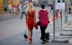 Linz (austrianpsycho) Tags: girls people dog dogs linz women leute streetphotography menschen baustelle hund damen hunde gitter frauen leine landstrase