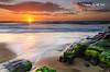Newcastle (Kiall Frost) Tags: ocean blue red sky orange sun seascape green beach water clouds sunrise newcastle print landscape star photo moss sand rocks image south australia nsw kiallfrost