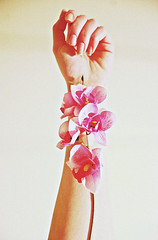 Delicate Things (melanieclarkk) Tags: flowers nature beautiful canon hand arm natural fingers nails