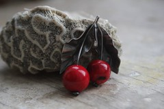 "Brooch ""cherry"" for Natalia (vikafogallery) Tags:"