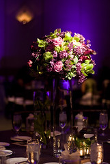Purple Lighting - Floral Pinspotting