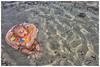 First Time Swim Smile (Dhemas Aji Ramadhany) Tags: denpasar pulauserangan seranganbeach flickrandroidapp:filter=none