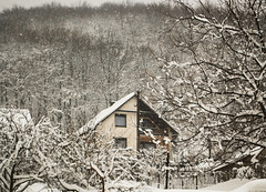 Winter wonderland. (Leavethelies) Tags: trees winter house snow cold nature beautiful nikon scenery hill freezing atmosphere snowing february wonderland d60