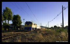 Hasta pronto! (Fepasas en la Araucania) Tags: tren efe pasajeros 16000
