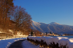 Winter afternoon (Tegernsee, Germany) (armxesde (back and catching up)) Tags: winter mountain lake snow alps tree germany bayern deutschland bavaria see pentax tegernsee k5 baviera mygearandme mygearandmepremium mygearandmebronze mygearandmesilver mygearandmegold mygearandmeplatinum mygearandmediamond