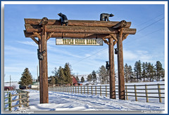 The place is crawling with bears (walla2chick) Tags: ranch oregon barn joseph carved gate arch photoshoot bears logs northeast sculptures triplecreek triplecreekranch topazadjust tuckerdownrd 3631ta
