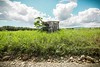 chabola (shack) (mdiactrl) Tags: costarica shack roadside puntarenas centralamerica chabola bordedelcamino