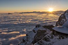 First Light (PhiiiiiiiL) Tags: morning schnee winter light sun mist mountain snow cold berg fog sunrise schweiz switzerland licht nikon suisse berge pilatus viewpoint kalt sonne sonnenaufgang morgen aussichtspunkt seilbahn nebelmeer d800e besteverdigitalphotography besteverexcellencegallery