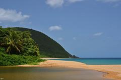 Guadeloupe - Grand Anse beach (Ron.Jansen) Tags: blue sea summer sun france beach sand palm palmtree caribbean guadeloupe grandanse