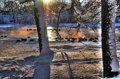 Ducks (Bengt F.) Tags: winter snow water nikon sweden ducks gävle soe nikond300 mygearandme photographyforrecreation rememberthatmomentlevel1 flickrsfinestimages1 flickrsfinestimages2 rememberthatmomentlevel2 bestevercompetitiongroup bestevergoldenartists besteverdigitalphotography vigilantphotographersunite vpu2
