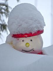 Snowman / Bonhomme de neige / Muneco de nieve (PULLKATT I'M BACK) Tags: christmas winter snow canada tree fence snowflakes snowman quebec hiver snowstorm qubec neige montrgie flocons tempte montsaintgrgoire