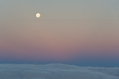 Moonrise over Mt Cargill, Dunedin, Otago, New Zealand, Feb 2013 (Clia Mendes Photography) Tags: pink blue newzealand sky tower azul clouds torre softness cu fullmoon moonrise cielo nubes nuvens lunallena corderosa beltofvenus novazelndia nuevazelanda rosado luacheia suavidad suavidade 2013 nascerdalua cinturndevenus cinturodevnus