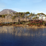 "Derryclare Lake <a style=""margin-left:10px; font-size:0.8em;"" href=""http://www.flickr.com/photos/89335711@N00/8595560301/"" target=""_blank"">@flickr</a>"
