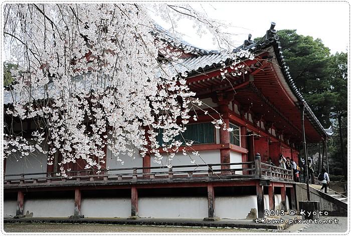 醍醐寺 (7).jpg
