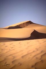 Dreamy Dunes 2 (Hamza Filali) Tags: sky sahara photography algeria sand shadows desert graphic designer dune constantine algerie hamza freelance filali tamnrasset