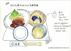2013_04_16_sakaiya_01_s (blue_belta) Tags: food art japan lunch sketch drawing  osaka japanesefood edm  coloredpencil croquette