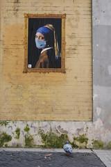 la Perla e il piccione. (RO.BO.COOP.) Tags: streetart rome roma poster smog mask urbanart pearl vermeer posterart raffaello leonardodavinci arteurbana pearlearring robocoop orecchinodiperla smogproject ladypearlearring
