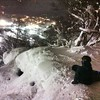 Night pow in Japan