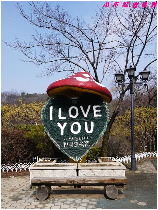 0403韓國民俗村 (85).JPG