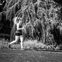 She's a Runner (Wade Brooks) Tags: 2016 dukegardens flowers july runner