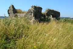 Chapel Ruins (Bob Hawley) Tags: suffolk england nikond7100 nikon24f28 outdoors summerholidays eastbridge countryside flowers rspb minsmere naturereserves farms fields