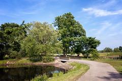 Weekend Stroll (HJharland5) Tags: tree outdoor summer path park weekend stroll footpath nikon j5