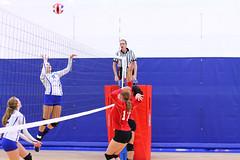 IMG_2365 (SJH Foto) Tags: net battle spike block action shot jump midair girls volleyball high school pleasant valley pa pennsylvania team tween teen teenager jv tournament burst mode