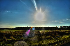 sun (f.tyrrell717) Tags: land scape sun whit bogs