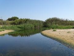 (RoBeRtO!!!) Tags: rdpic blue water creek green nature sand beach sky acqua azzurra torrente natura verde sabbia spiaggia cielo menfi sicily sonyhx400v
