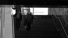 Lpcsk / Stairs (Fvm tr) (bencze82) Tags: budapest hungary magyarorszg canon eos 700d tavasz spring voigtlnder apolanthar 90mm f35 slii lpcsk stairs fvm tr