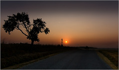 In the village Plesice today at 6:57 AM (piontrhouseselski) Tags: cz moravia sunrise tree cross sun road