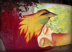 (sueña) abre la ventana, no te salves. (Felipe Smides) Tags: mural fuego pájaro tierra smides felipesmides