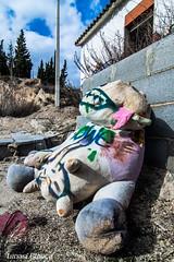 Teddy (Natx33) Tags: abandoned wasted cow stuffed teddy ruinas deserted vaca runes peluche abandonado abandonada destrozado peluix oblidat destrossat