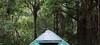 Brazil, Amazon 2013