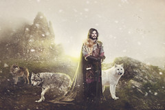 Lord of the North (Desire Delgado) Tags: light snow luz wolf north manipulation lord medieval fantasy montaa lobos wolves norte nevar seor