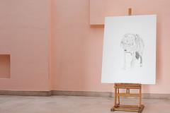 exposition Dominique Leblanc villa Noailles