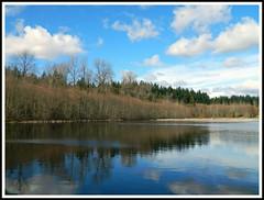 Green Timbers Lake (careth@2012) Tags: scenery beautifulearth thegalaxy thebestofbeautifulearth chariotsofnaturelevel1 chariotsofnaturelevel2 webshotscommunity
