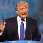 From flickr.com: Donald Trump {MID-61219}