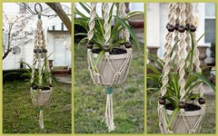 Hemp Swirly Chocolate Drops (Macramaking- Natural Macrame Plant Hangers) Tags: plants brown plant green hippies woodland fun spring natural herbs gardening handmade folk character craft peaceful northcarolina funky retro hammock naturist hanging americana hippie fengshui flowing boho planter groovy hang bohemian homedecor hanger macrame stylish hemp earthday provincial spiderplant madeinusa woodsy ecofriendly conversationpiece hangingbasket naturalist shabbychic officedecor hangingbaskets bohochic containergardening macram planthanger spacesaving woodbeads planthangers southerncharm hangingplanter macramebeads decorativeknotting chocolatedrops naturalhemp macrameplanthanger macramakin macramaking httpwwwetsycomshopmacramaking macramecord indoorplanters macrammacramaking herbhanger macrametechnique chinesecrownknots macramehangingbasket macrameweaving macramelove hempswirly